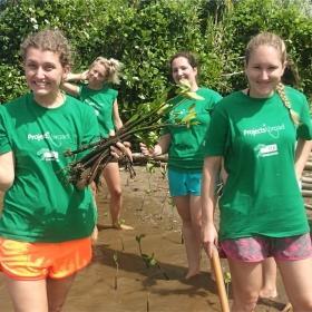 Voluntarias ambientales listas para replantar manglares en Fiyi.